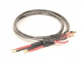 Straightwire Virtuoso H 1.0