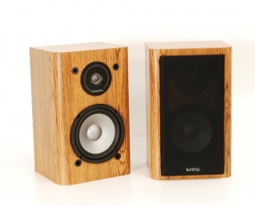Infinity RS-2000
